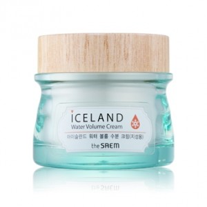 the SAEM Iceland Water Volume Cream(For Oily Skin) 80ml